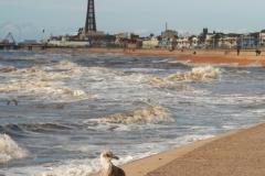Blackpool-21_web