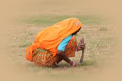 Sowing - Jantar Mantar, Rajasthan